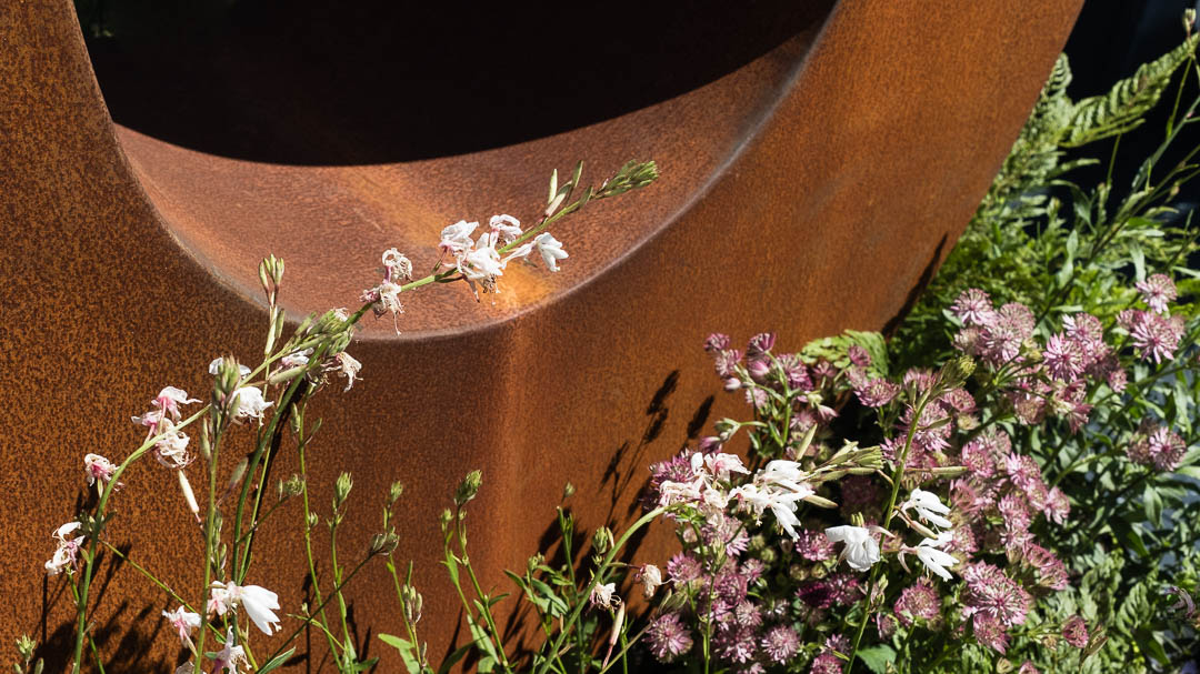 Corten sculpture Resilience surrounded by plants. By sculptor Jill Clarke